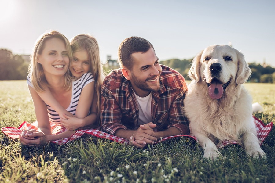 Personal Insurance - Happy Family Portrait with Family Dog Lying Down in a Field on a Sunny Day